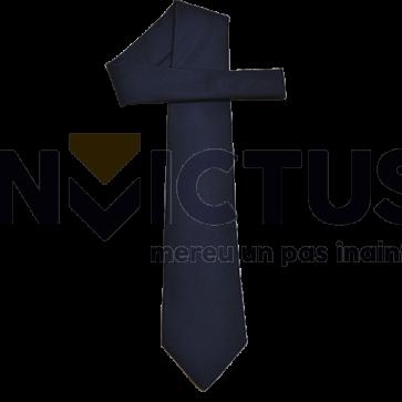 Cravată ultramarin - 233763